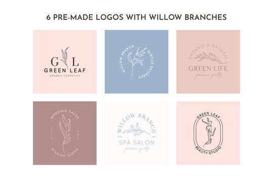 Willow branch with leaves logo design template in simple minimal linear style. Abstract Feminine Vector Signs