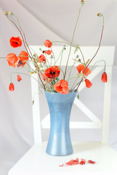 Bouquet of wilting scarlet poppies in a vase on a white chair in a light interior.