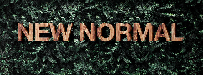 new normal wood word on green leaf wall background nature sustainable concept