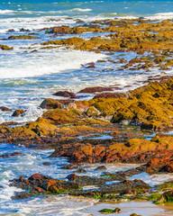 Rock Beach, Punta del Este, Uruguay
