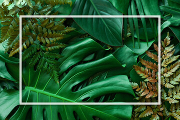 Wall Mural - tropical green leaves and palms with white frame, nature flat lay concept