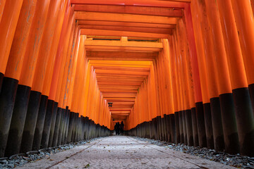 The red torii gates walkway path at fushimi inari taisha shrine the one of attraction landmarks for tourist in Kyoto at Japan.
