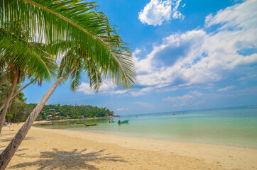 Paradise Sunny beach with palms and turquoise sea. Summer vacation and tropical beach concept.