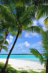 Obraz View of a tropical landscape with palm trees, white sand and the turquoise lagoon water in Bora Bora, French Polynesia, South Pacific - fototapety do salonu