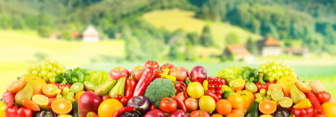 Wall Mural - Vegetables and fruits on background of rural landscape