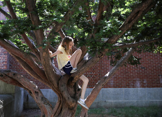 Lydia Hassebroek climbs a tree during the outbreak of the coronavirus disease (COVID-19) in Brooklyn, New York