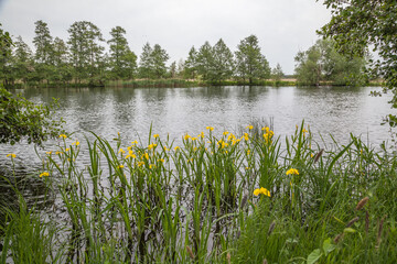 Havellandschaft bei Rathenow, Deutschland