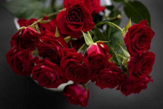 Red roses in vase