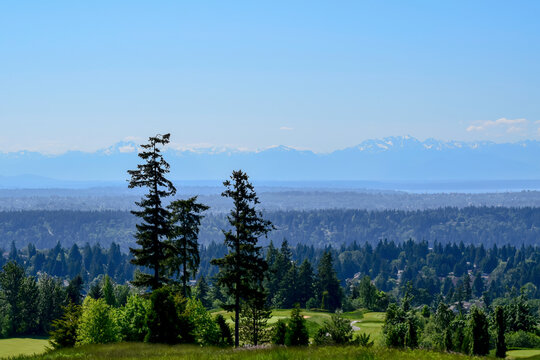 Newcastle golf course on a spring day; golf course can be seen partially in the front and the Olympic Mountains far away in the back.