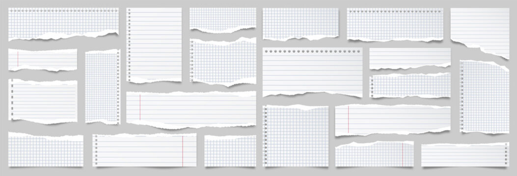 White ripped lined paper strips collection. Realistic paper scraps with torn edges. Sticky notes, shreds of notebook pages. Vector illustration.