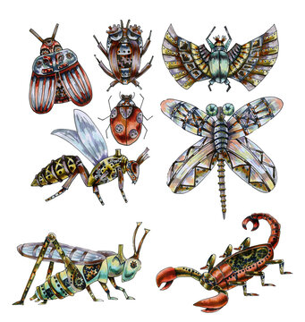 Set of insects drawn in the steampunk style.Watercolor illustration.Collection of mechanical beetles, bees, crickets, grasshoppers,Scorpions isolated on a white background. Fantastic art.robot beetles