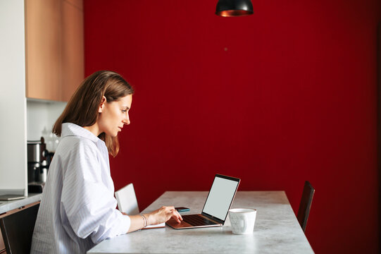 Businesswoman work from home office. A young concentrated woman is using laptop in modern apartment. Side view
