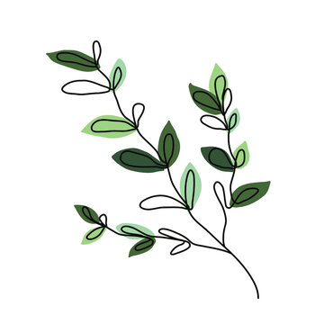 Tree branch. Simple vector illustration isolated on white background.