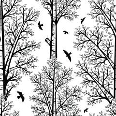 Modèle sans couture d& 39 arbres de bouleau noir et blanc de vecteur