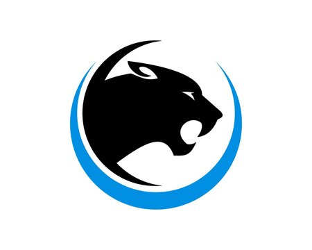 Black panther with blue circle