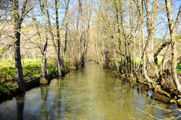 Paisaje natural del río Cereixo en el bosque cerca de Laza, un pueblo de la provincia de Ourense, Galicia, España
