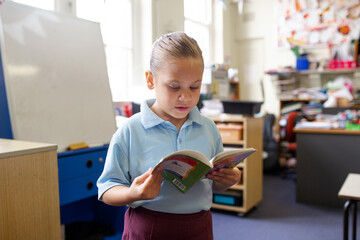 Indigenous primary school student standing reading a book in a classroom