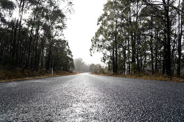 Low angle shot of wet bitumen country road