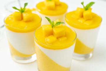 Italian dessert mango panna cotta decorated with fresh mango and mint