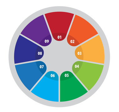 Nine Step Circular Process Infographic