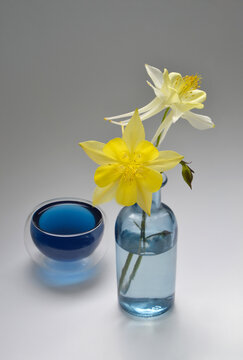 Flowers in a blue vase and a cup of tea Anchan