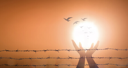 World mental health day concept: Silhouette prayer praise God and bird flying with barbed wire on blurred sunset background