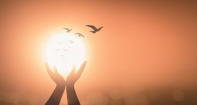 World mental health day concept: Silhouette prayer praise God and bird flying on blurred candle light background