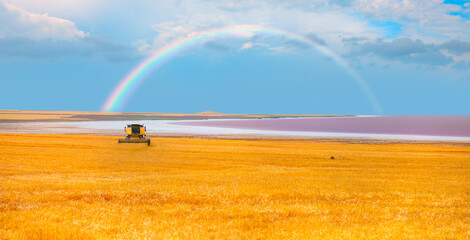 Combine harvester in field wheat - Beautiful landscape with panoramic view of Salt Lake and amazing white clouds on the foreground golden wheat field - Ankara, Turkey