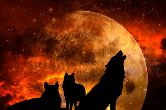 three wolves - pack of wolves over background with planet and universe like mystic magic fantasy animal concept