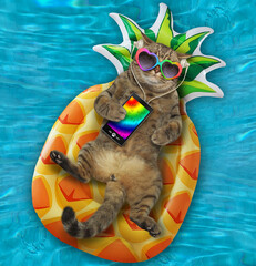 The beige cat in sunglasses is lying on an inflatable pineapple and listening to music in the...