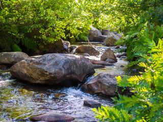 """Mountain stream """"Rio de la Miel"""" Algeciras, Cadiz, Andalusia, Spain, during Spring time"""