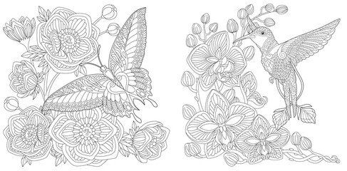 Coloring pages with butterfly and hummingbird
