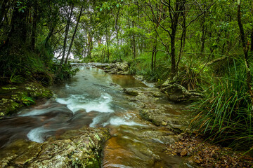 A stream flows to the top of Goomoolahra Falls in Springbrook National Park, Queensland