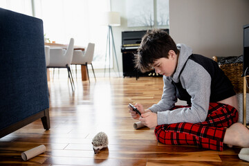 Boy photographing hedgehog at home