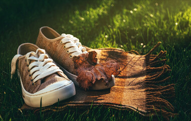 Background and concept of golden autumn and indian summer. Bright city sneakers and a warm autumn woolen scarf against a background of green grass, falling autumn leaves and the evening autumn sun
