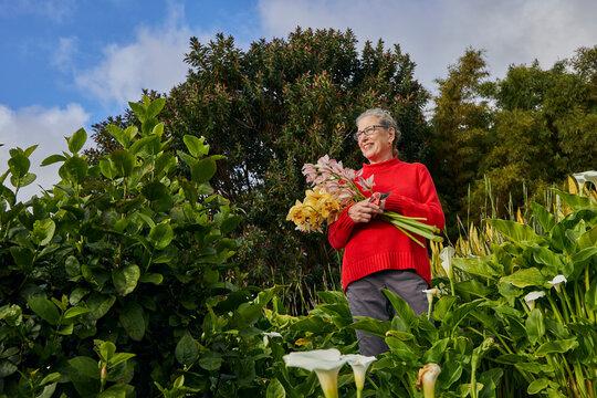 Older Woman Holding Bouquet of Fresh Cut Flowers in her Garden