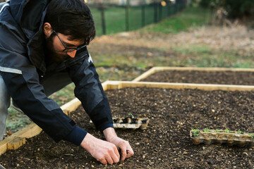A man planting seedlings in early spring.