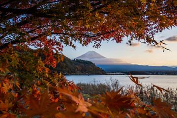Deurstickers Bruin Autumn at Kawaguchiko lake.