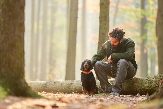 Bracke as a hunting dog together with a hunter