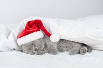 Cute kitten wearing red santa's hat sleeps under a blanket