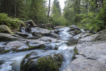 National Park Harz in Germany