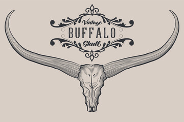 Buffalo Skull Engraving and Tattoo Design Style, Skull with Long Horns