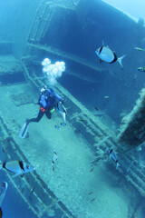 Photo sur Plexiglas Naufrage Scuba Divers Exploring underwater ship wreck