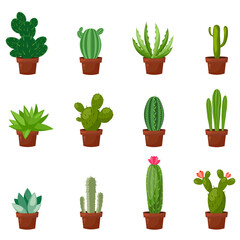 Set of desert or room green cactus. Flat and cartoon style. Vector illustration on white background. Element for your design.