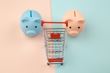 Shopping concept, economy, savings. Two piggy bank with supermarket trolley on colorful background.