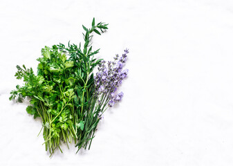 Aromatic garden herbs - tarragon, lavender, cilantro, dill on a light background, top view. Cooking food spices ingredients
