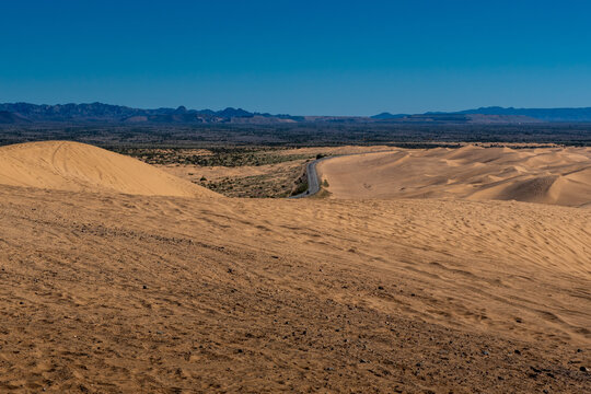 Comparative view Imperial Sand Dunes  in the Sonoran Desert of California, USA, featuring tire tracks from dune buggying on one side and native vegetation on the other, protected side