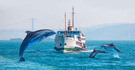 Group of dolphins jumping on the water - Water trail foaming behind a passenger ferry boat in Bosphorus, Istanbul, Turkey