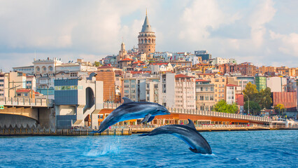 Group of dolphins jumping on the water - Galata Tower, Galata Bridge, Karakoy district and Golden Horn at morning, istanbul - Turkey