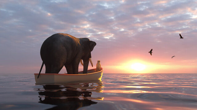 elephant and dog sail in a boat at sea